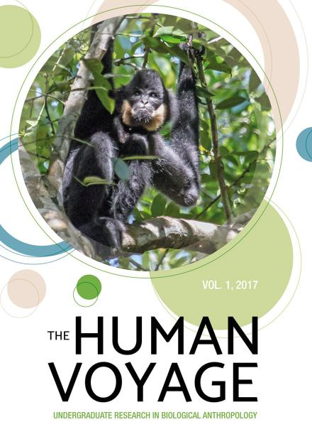 The Human Voyage: Volume 1, 2017